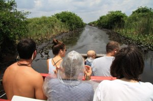 On the airboat in the Everglades