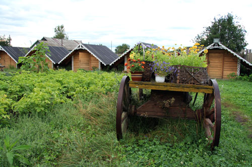 Quaint cabins for overnight stay