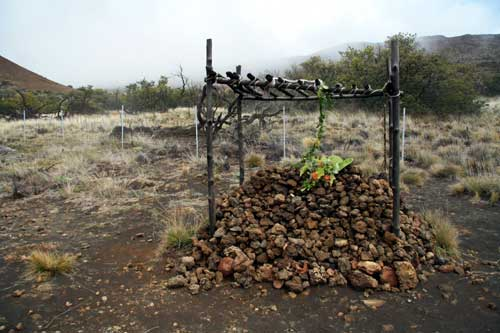 Memorial or burial site on Mauna Kea