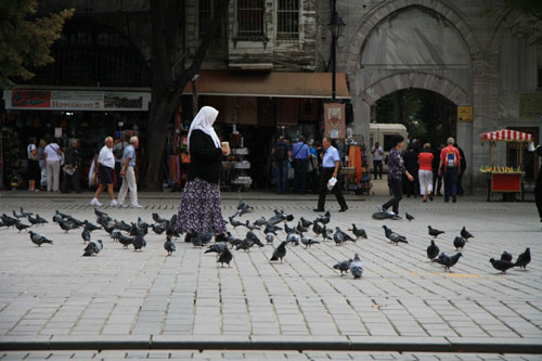 Woman Feeding the Pigeons