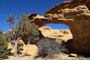 Dutchman Arch