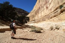 Larry Looking up the Steep Walls of Devil's Canyon