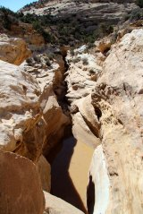Looking into the Devil's Canyon Narrows